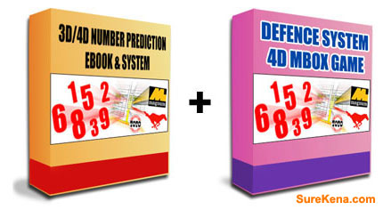 Malaysia 3D/4D Lottery Course Basic Level